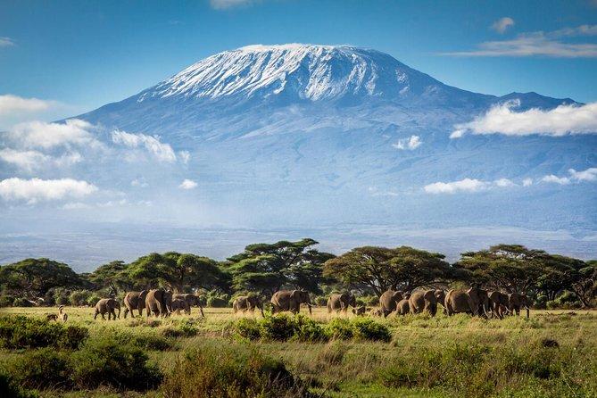 6 Days Marangu Route Trekking Adventure in Mount Kilimanjaro