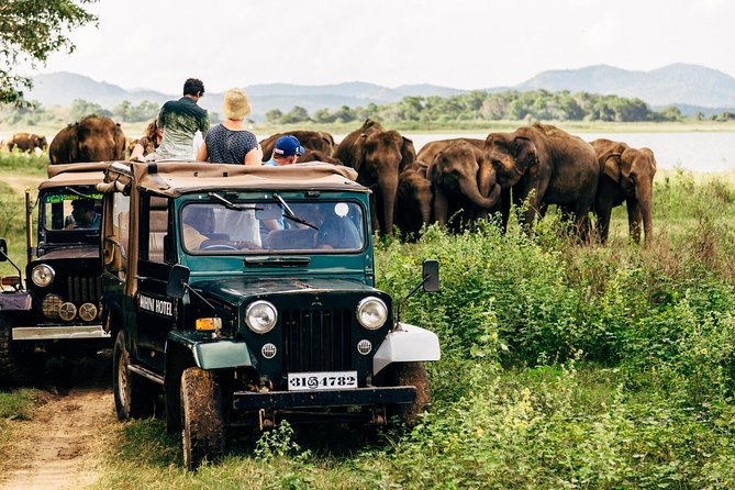 Best 4-Days Private Sri Lanka Experience with a Local