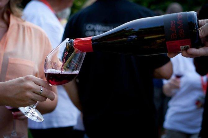 Bourgueil wine tasting