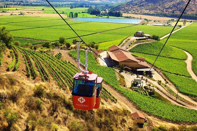 Santa Cruz vineyard tour + Viu Manent vineyard