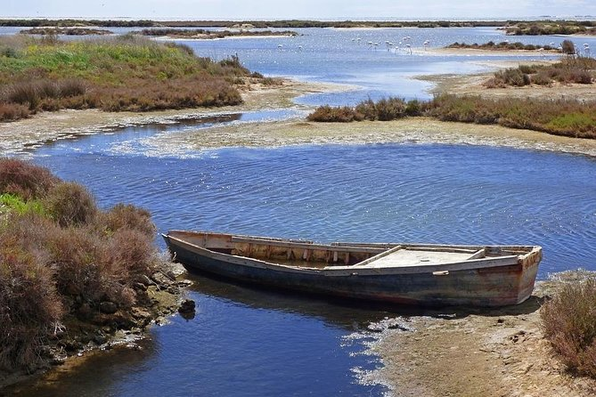 Ebro Delta Gastronomy -Small group and hotel pick-up from Barcelona
