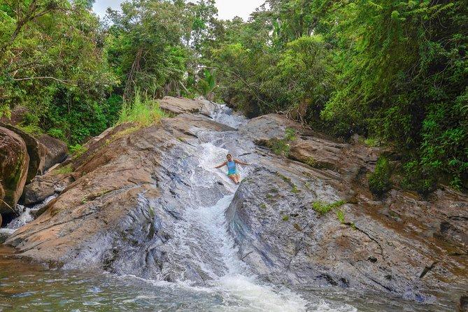 Rainforest River, Waterslide & Beach Adventure in Puerto Rico