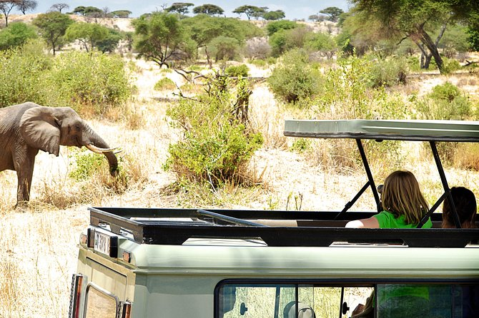 Full-Day Arusha Tarangire National Park Private Tour