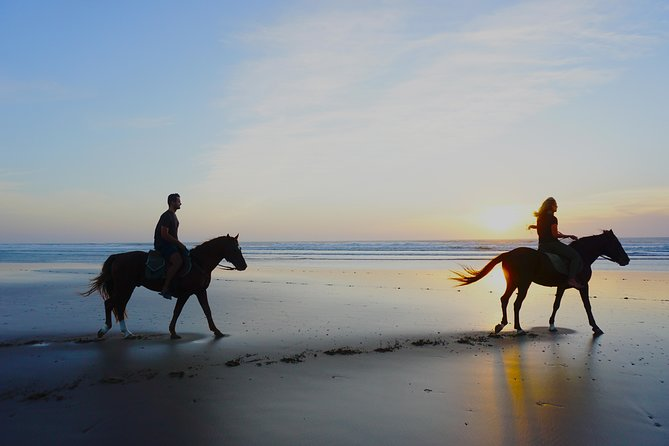 Couple Windsurf, Surf, Horse Riding Action week
