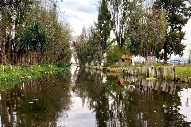 Tour and exclusive dinner in xochimilco.