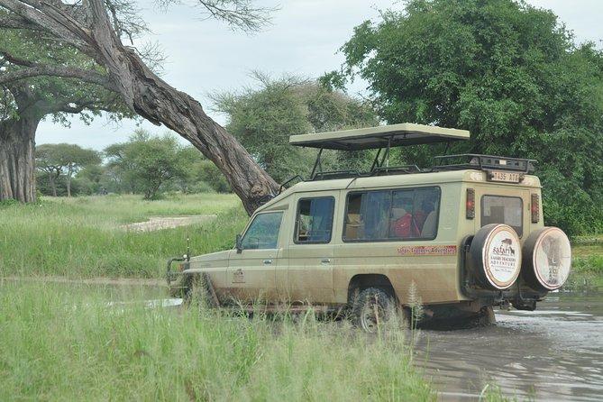 4 Days Tanzania Safaris to Tarangire, Serengeti N.Park and Ngorongoro Crater