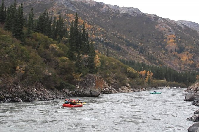 Rafting på Nenana Gorge