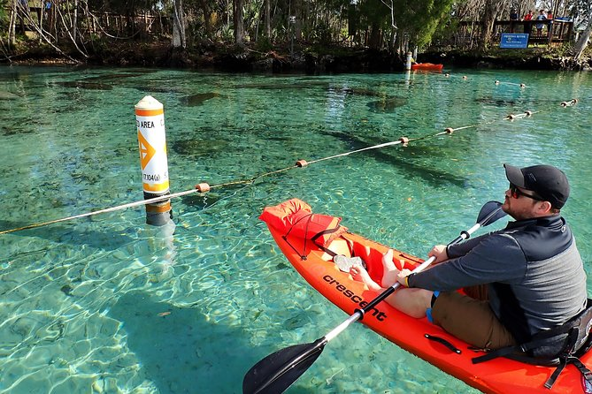 Guided Kayak Eco-Tour of Crystal River