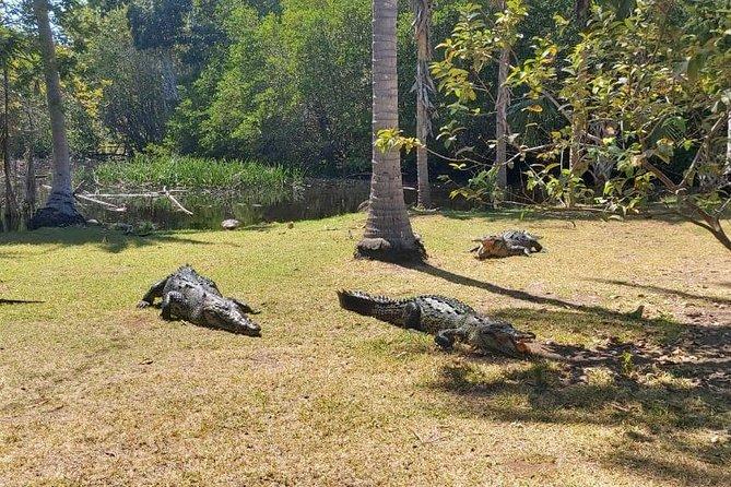 Croc´s & Turtle Aquarium