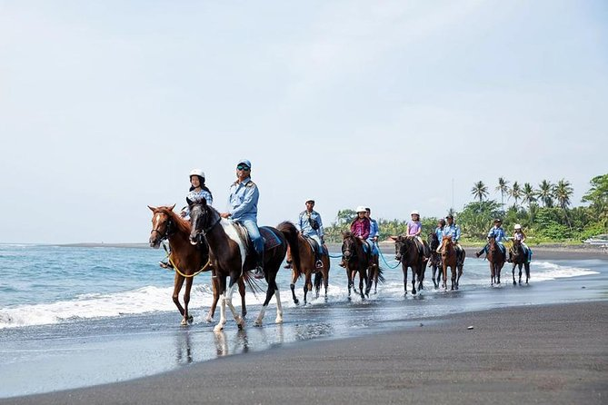 Full-Day Bali Horse Riding Adventure and Exploring Tour to Uluwatu