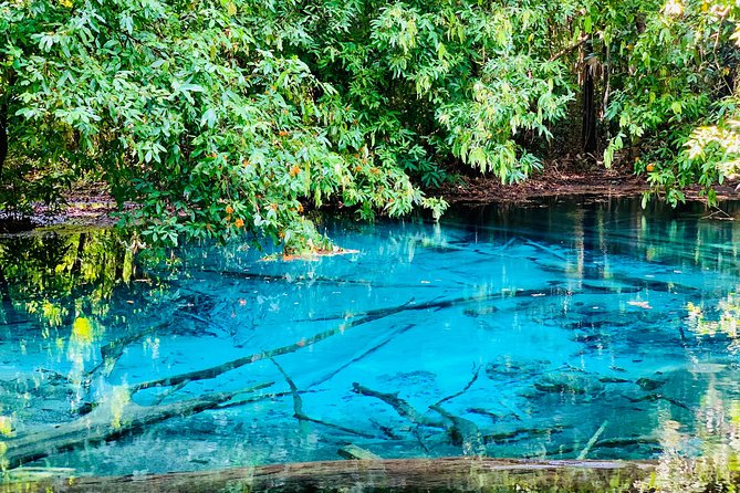 Krabi Rainforest Discovery Tour with lunch