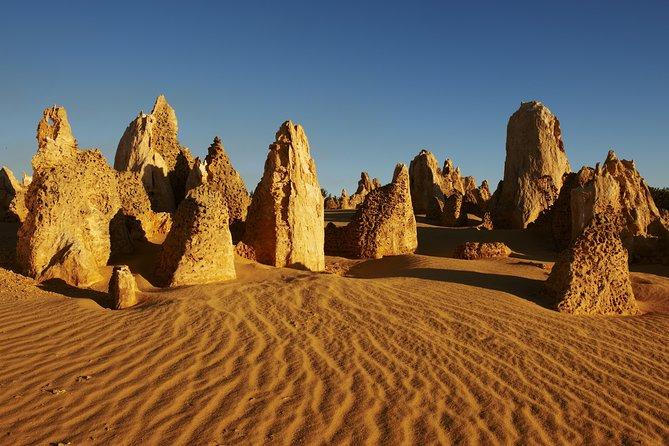 Pinnacles Desert Private Tour