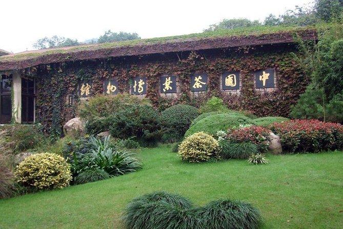 Hangzhou Day Trip Dragon Well Tea Plantation and Culture Tour