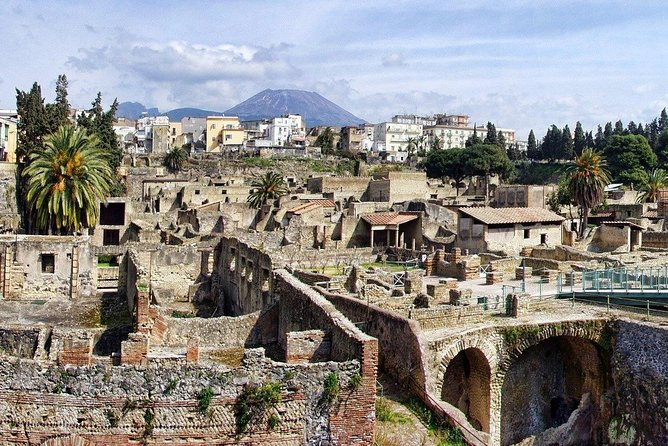 Herculaneum and Archeological museum of Naples - From Naples