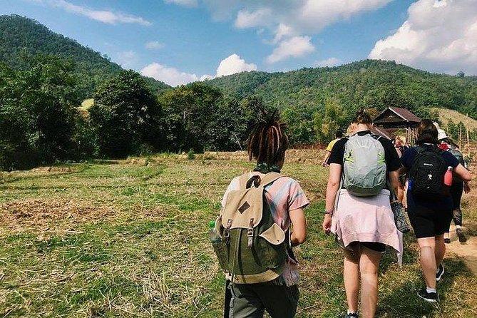 2D1N Mae Wang National Park Jungle Trekking Adventure from Chiang Mai