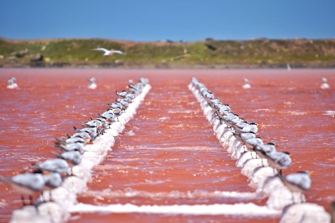 Pink Sea, Mud Volcano & Cultural Experience in Indigenous Town (Galerazamba)