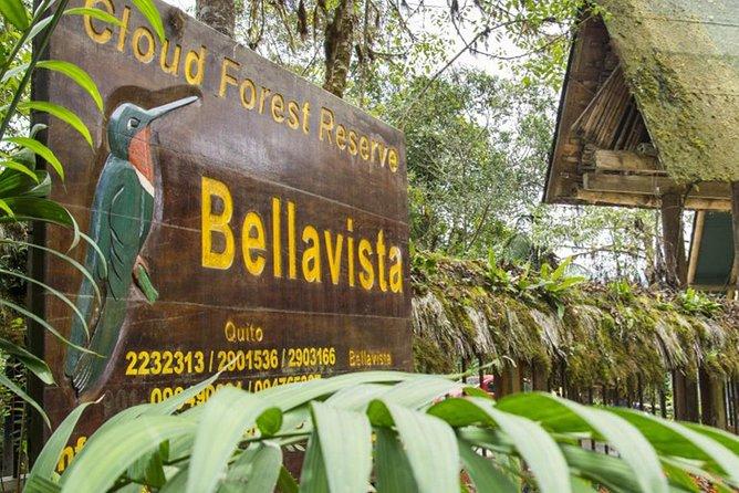 Bellavista Cloud Forest reserve / 3 day tour