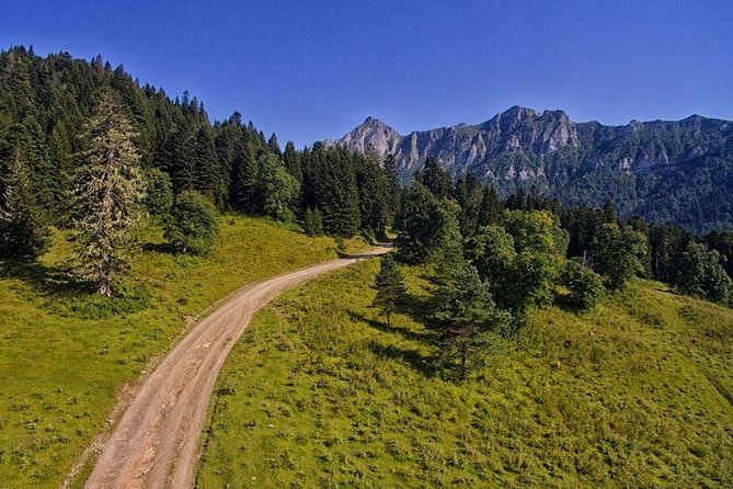 One day tour from Kutaisi to Zekari pass (on the road to Abastumani)