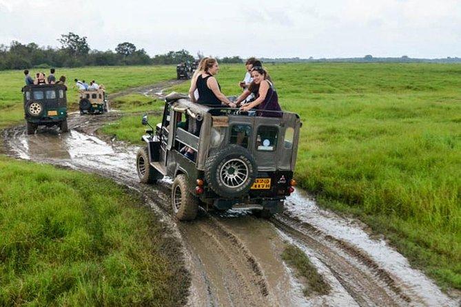 3-Hour Hurulu Eco Park Jeep Safari including Entrance Fee