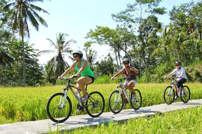 Full-Day Private Cycling and Exploring Tour to Ubud, Bali