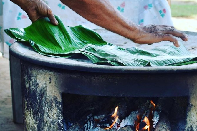 Gastronomy and indigenous herbalism