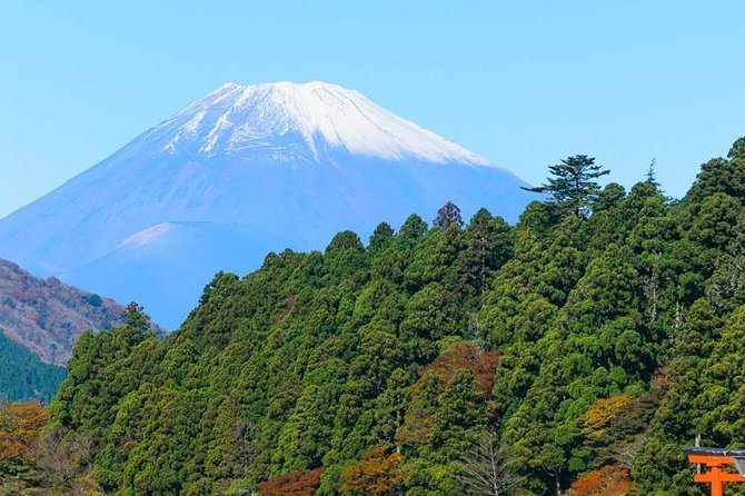 7 Days Japan Discovery Group Tours
