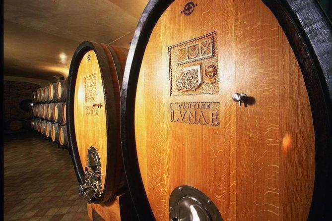 Vermentino Wine Experience at Ca Lunae in Liguria