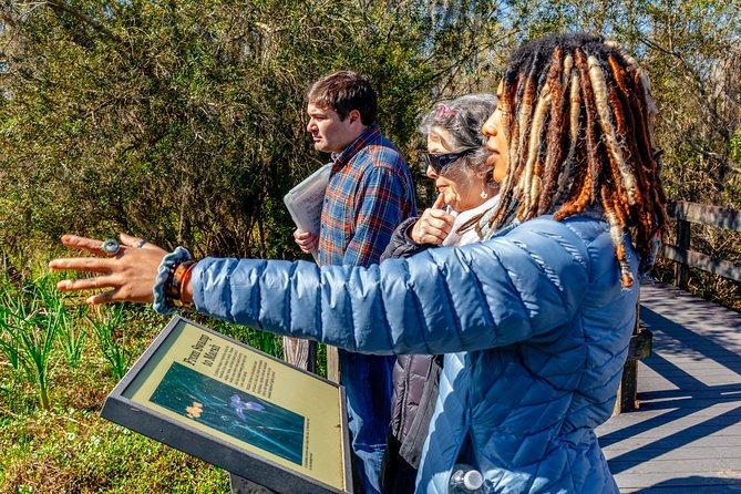 New Orleans Natural Treasures: Swamp Boardwalk Private Tour