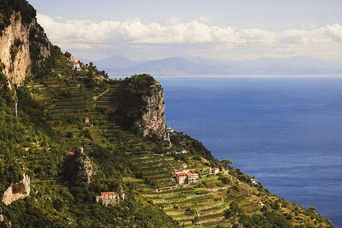 Wine tasting and lunch at Marisa Cuomo winery in Amalfi