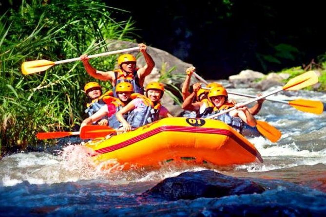 Half Day White Water Rafting with Red Paddle Ubud