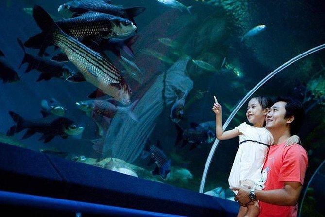Underwater World Admission Ticket at Pattaya