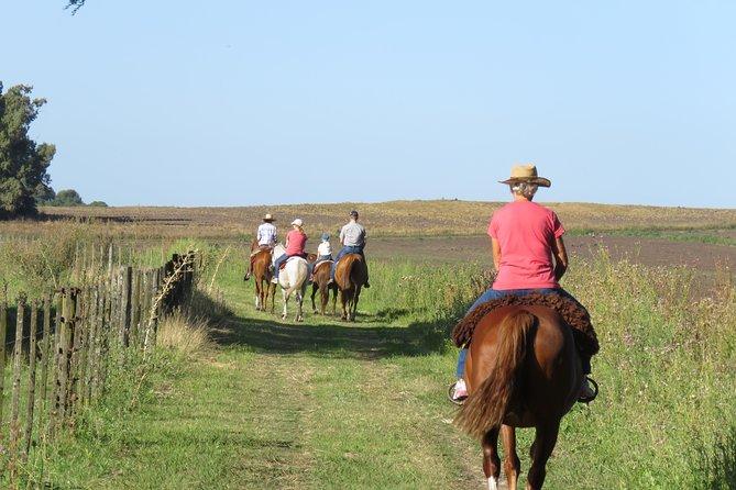 Ride the Pampas: a horse experience - Cabalga las Pampas: experiencia a caballo