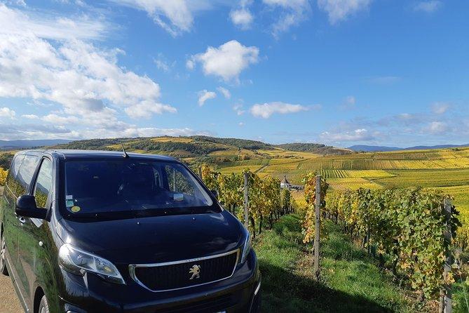 Excursion privée d'une journée complète sur la Route des Vins d'Alsace au départ de Strasbourg