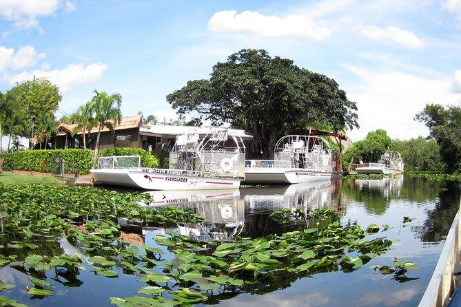Transfer from Miami Port to Miami Airport with Semi Private Everglades Park Tour