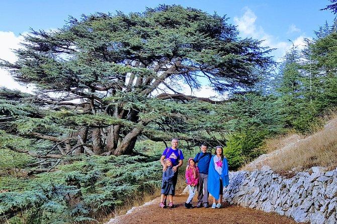 Full-Day Private Trip to Beiteddine, Deir el Qamar and Chouf Cedars