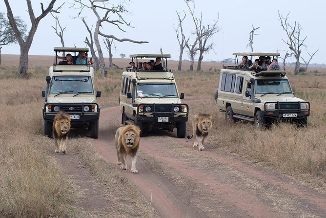 5 Days Safari – SELOUS & ZANZIBAR