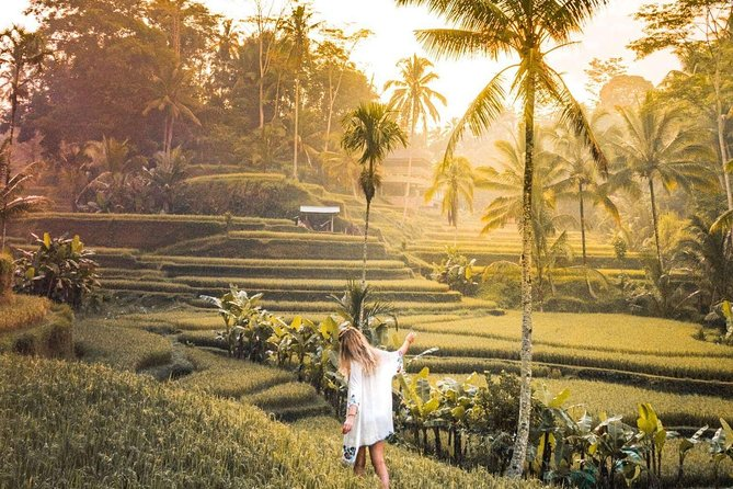 Ubud highlight private Tour - FREE WIFI