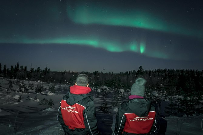 Northern Light Tour with Snowmobile Sleigh Ride
