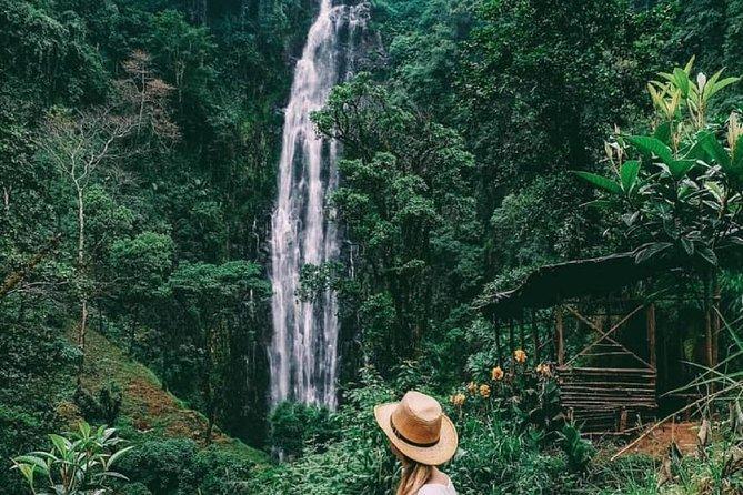 Private Tour to Materuni Waterfalls and Kikuletwa Hot Springs