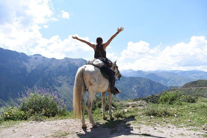 Colca horse ride 2D / 1N