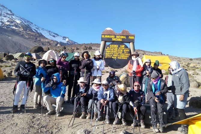 Northern Circuit Route. 11 Day Climbing Kilimanjaro Experience