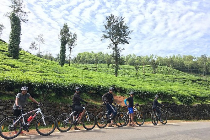 Half-Day Private Kangra Valley Cycling Tour from Dharamshala