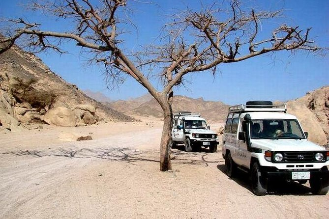 Full-Day Safari Desert Tour in Hurghada by Jeep