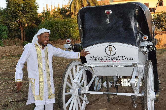 Visit of the west bank of Luxor in a white carriage 18th century style