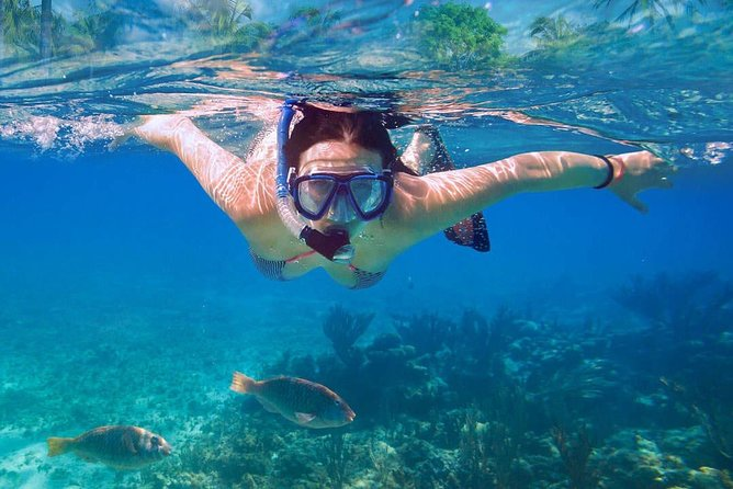 Catalina Island Tour with Snorkelling, Lunch and Dance