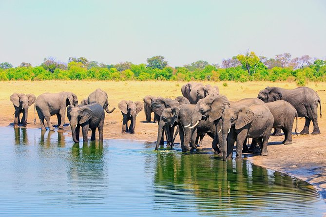 3 Day Victoria Falls Zambezi National Park Budget Safari Tour