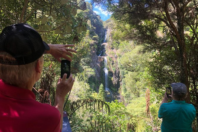 Private Tour to Auckland's Wild West with Bush walks, waterfalls & Piha Beach.