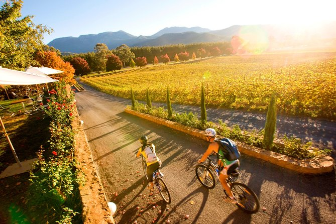 Feathertop Winery: Pedal and Picnic in the Vines