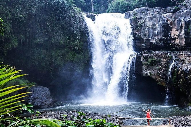 Half-Day Private Tour Explore Ubud and Waterfall Exploring