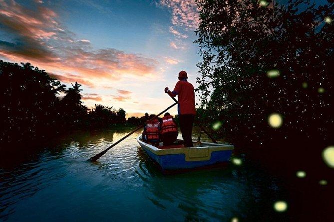 Kuala Selangor Fireflies Tour (Special Deal)